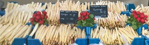 spargel stand